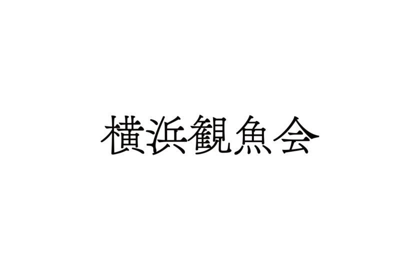 横浜横浜観魚会